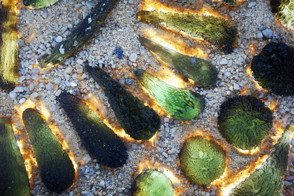 moldavite minerals collection