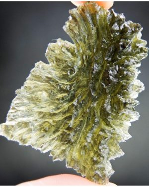 Authentic Rare Moldavite Hedgehog From Basednice With Certificate Of Authenticity (11.75grams)