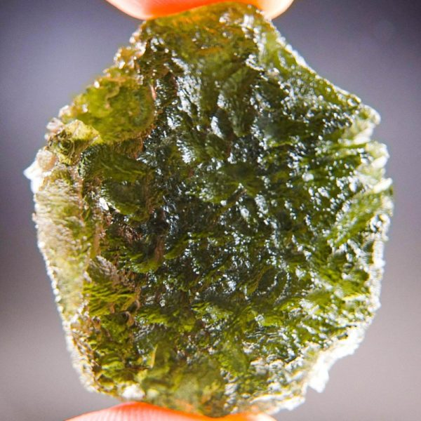 Quality A+ Large Shiny Moldavite with Certificate of Authenticity (17.6grams) 1