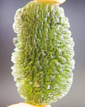 Abrasion Large Moldavite With Certificate Of Authenticity (11.48grams) 1