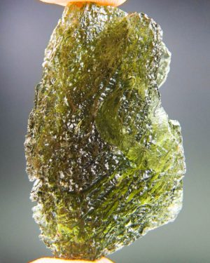 Quality A+ Large Glossy Olive Green Moldavite With Certificate Of Authenticity (15.95grams) 1